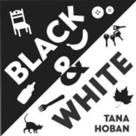 Link to an enlarged image of Black & White (BRDBK)