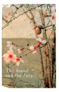 Link to an enlarged image of Sound and the Fury -- Paperback / softback