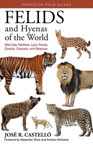 Felids and Hyenas of the World: Wildcats, Panthers, Lynx, Pumas, Ocelots, Caracals, and Relatives 9780691205977