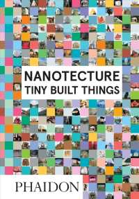 Link to an enlarged image of Nanotecture