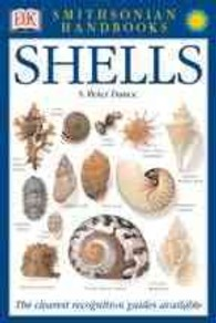 Link to an enlarged image of Smithsonian Handbooks Shells : The Photographic Recognition Guide to Seashells of the World (Smithsonian-handbooks)