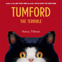 Link to an enlarged image of Tumford the Terrible (Tumford) (BRDBK)