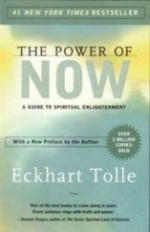 Link to an enlarged image of Practising the Power of Now