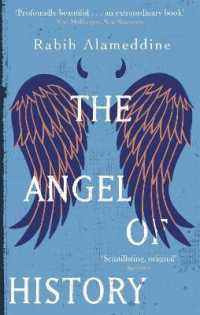 Link to an enlarged image of Angel of History -- Paperback / softback