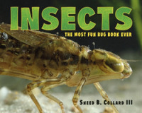 Link to an enlarged image of Insects : The Most Fun Bug Book Ever