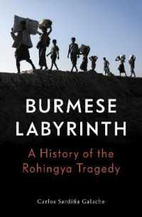 Link to an enlarged image of The Burmese Labyrinth : A History of the Rohingya Tragedy