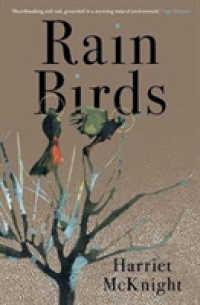 Link to an enlarged image of Rain Birds
