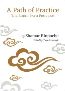 Toward Awakening: The Bodhi Path Program 9782360170197