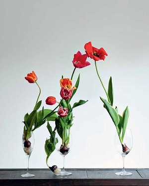Link to an enlarged 7th image of Japanese Ikebana for Every Season
