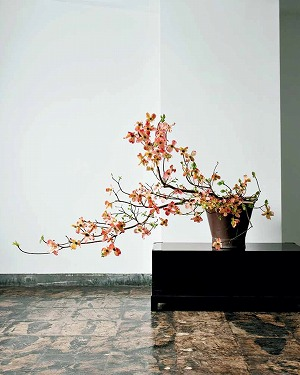 Link to an enlarged 9th image of Japanese Ikebana for Every Season